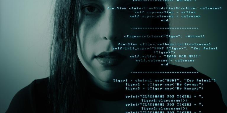 De fraudeur, de hacker en jij